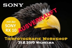 SONY Tierfotografie Workshop 31.8.19 Wilhelma