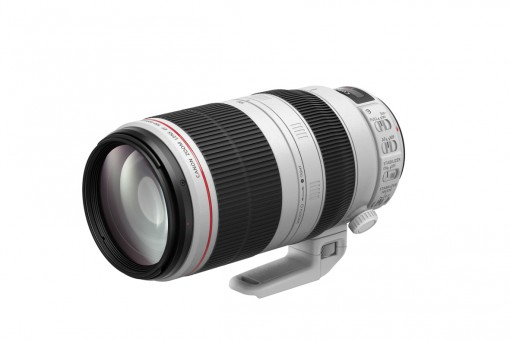 CANON EF L 100-400mm 4,5-5,6 IS USM II
