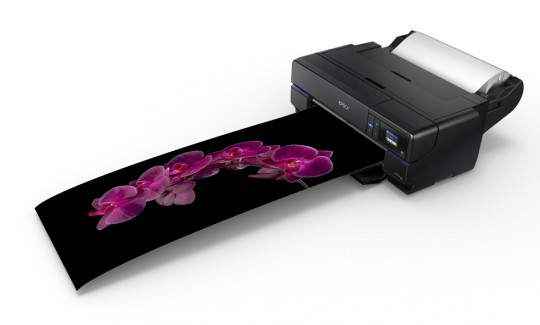 EPSON SURECOLOR SC-P800 INCL. ROLL-UNIT
