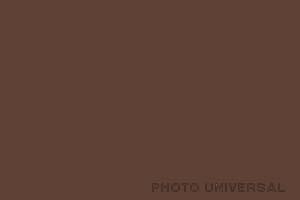 HINTERGRUND 2,75X11 M. DUNKELBRAUN 21520