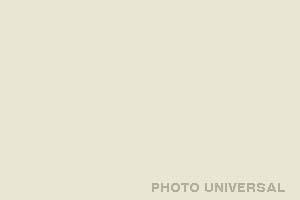 HINTERGRUND 2,75X11 M. SCHNEEWEISS 21528 WHITE 50