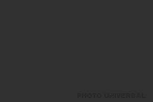 HINTERGRUND 2,75X11 M. SCHWARZ 21544