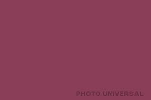 HINTERGRUND 2,75X11 M. ROT-VIOLETT 21562