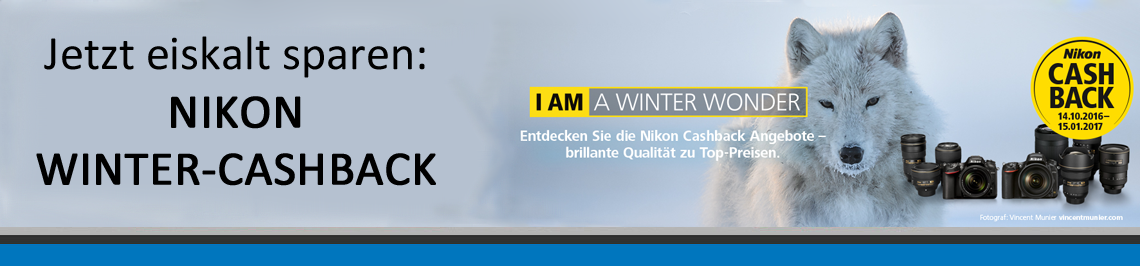 Nikon Winter-Cashback