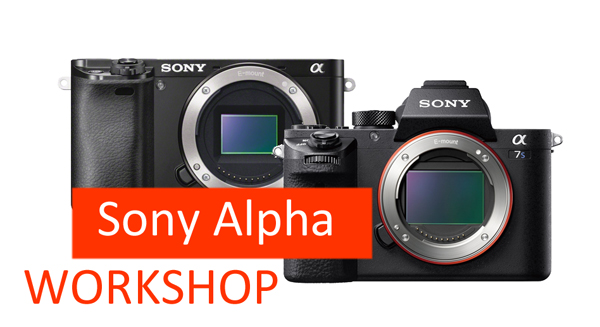 Sony Alpha 7 + Alpha 6000 Workshop